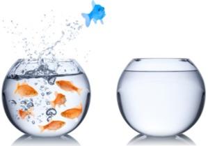 Sortir de l'océan rouge de la concurrence et naviguer dans l'océan bleu