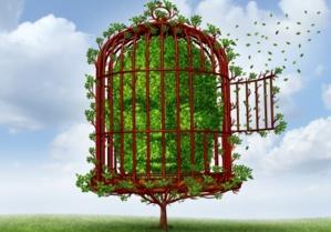 1.52 La Ligne du temps : Un outil pour mieux concilier vie professionnelle et vie personnelle