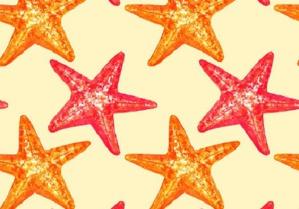 Le conte des étoiles de mer, un conte pour agir
