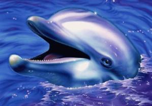 La parabole du dauphin
