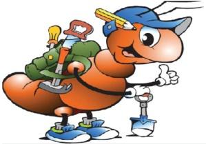 Le frelon et la fourmi