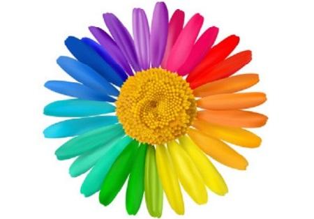 1. 47 Animez des réunions créatives avec la marguerite holomorphique