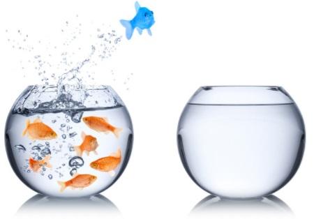 3.22 L'Océan bleu : une nouvelle conception de la stratégie d'entreprise