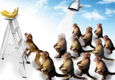 Théorème du singe