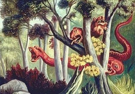 Le Dragon à plusieurs têtes et le Dragon à plusieurs queues.