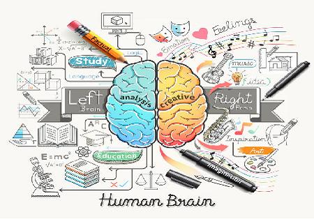 Conférence « Connaitre son cerveau et booster ses capacités »