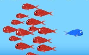 3. 40 Comment construire votre stratégie Océan Bleu en créant une innovation Valeur