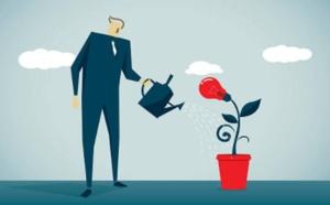 4.1 Comportements collectifs de performance et cultures d'entreprise