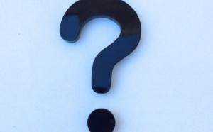4.81 La raison d'être d'une entreprise est-elle un levier stratégique ?