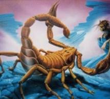 Le maître et le scorpion
