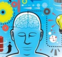 1.42 L'attention consciente : une ressource essentielle en Management