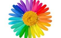 1. 47 Animez des réunions créatives avec la marguerite holographique