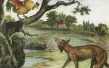Le Coq et le Renard