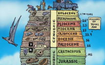 Bienvenue dans l'Anthropocène